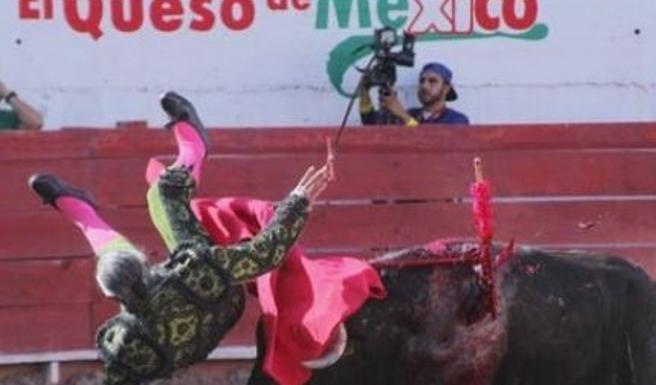 Rodolfo Rodríguez celebre torero incornato